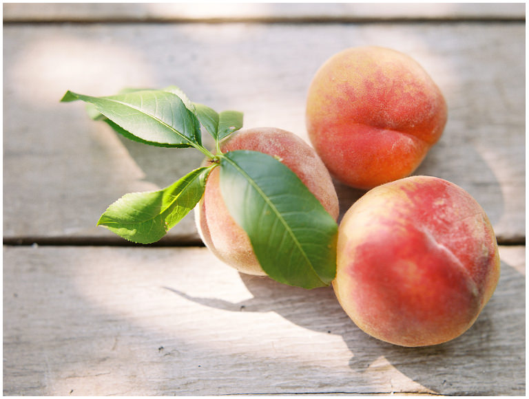 Mt. View Orchards Peaches-43w